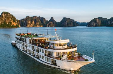 Dynasty Cruises Halong